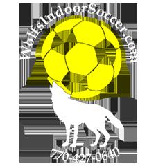 Wolf's Indoor Soccer